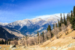 View of snow mountain. In kashmir, india Stock Photos