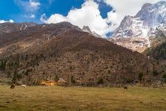 View of snow mountain at Siguniang National Park Stock Photo
