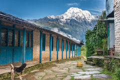 View of snowed mountain peak from a tourist lodge in Himalayas, Nepal. View of snowed mountain peak from a tourist lodge in Himalayas, with dog standing in the stock photos
