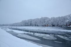 Vew of the frozen river from the shore, winter in Uzhhorod, Ukraine. View of the snowy embankment of the river with floating ice, snow trees along the coast Royalty Free Stock Photo