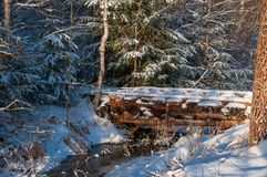 Bridge over the forest stream. The view of snowy forest at sunny frosty afternoon next day after Christmas with a bridge over frozen stream Royalty Free Stock Image