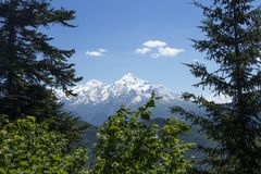 View on snowy mountain peak through trees in Svaneti region of Georgia, Mestia. Mountains ranges. Caucasus mounts. Rocky mountains. On clear afternoon stock images