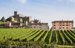 View of Soave (Italy) and its famous medieval castle. View of Soave (Italy) surrounded by vineyards that produce one of the most appreciated Italian white wines royalty free stock photo