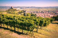 View of Soave Italy and its famous medieval castle Stock Image