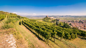 View of Soave Italy and its famous medieval castle. Royalty Free Stock Photography