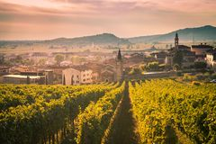 View of Soave Italy surrounded by vineyards. View of Soave Italy surrounded by vineyards that produce one of the most appreciated Italian white wines Stock Photos