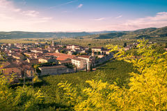 View of Soave (Italy) surrounded by vineyards. Royalty Free Stock Image