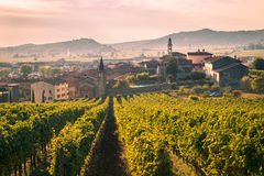 View of Soave Italy surrounded by vineyards. Stock Images