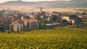 View of Soave Italy surrounded by vineyards. Stock Photos