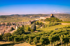 View of Soave & x28;Italy& x29; and its famous medieval castle Stock Images
