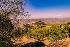 View of Soave (Italy) and its famous medieval castle Royalty Free Stock Images