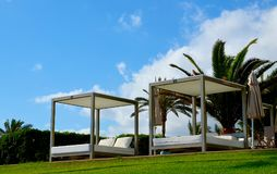 View of some beds sunloungers and palm trees on a green grass in a beach club of Tenerife,Canary Islands,Spain. Travel,vacation,relax concept royalty free stock photography