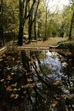 Beautiful park with pond. View of some detail of the Caldas de Monchique park on Portugal Stock Image