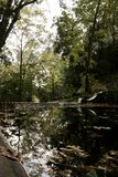 Beautiful park with pond. View of some detail of the Caldas de Monchique park on Portugal Stock Photo