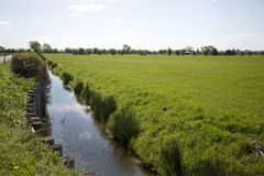 View of Somerset Levels Stock Images
