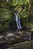 Big waterfall in carpathian forest Royalty Free Stock Image