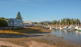 Southeast Harbor at Low Tide. A view of Southeast Harbor Maine on Mt. Desert Island at low tide Royalty Free Stock Image