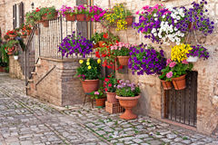 View of spello town Royalty Free Stock Images