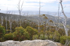 View from Sphinx Rock on Mt Wellington, Hobart. A treetop view from atop Sphinx Rock on Mt Wellington in Hobart, Tasmania royalty free stock photography
