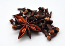 Seasoning. View of spices, clove and star anise Stock Images