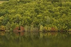 Autumn forest reflection on a lake. A view of splendid autumn forest reflection on a lake Royalty Free Stock Photos