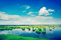 View on spring flood field and cloudy sky instagram stile Stock Photo