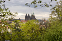 View on the spring Prague City with gothic Castle, green Nature and flowering Trees, Czech Republic Stock Photography