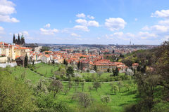 View on the spring Prague gothic Castle with the green Nature and flowering Trees Royalty Free Stock Photography