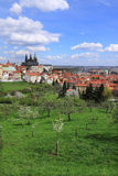 View on the spring Prague gothic Castle with the green Nature and flowering Trees, Czech Republic Stock Images