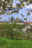 View on the spring Prague gothic Castle with the green Nature and flowering Trees, Czech Republic Royalty Free Stock Photography