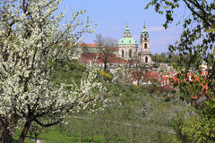 View on the spring Prague St. Nicholas' Cathedral with the green Nature and flowering Trees, Czech Republic Royalty Free Stock Image