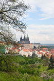 The view of spring Prague Royalty Free Stock Photos