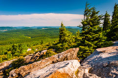 View from Spruce Knob, West Virginia. Royalty Free Stock Photo