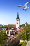 View on St. Nicholas' Church (Niguliste). Old city, Tallinn, Estonia Stock Image