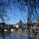 View of St Peter Basilica through winter Trees Royalty Free Stock Photo