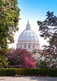 View at the St Peter's Basilica from the Vatican Gardens in a sunny day Royalty Free Stock Photos