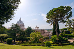 View at the St Peter's Basillica Royalty Free Stock Photo