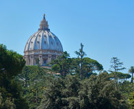 View of St Peters, Vatican. St Peters Basilica as seen from the Vatican Gardens Stock Photo