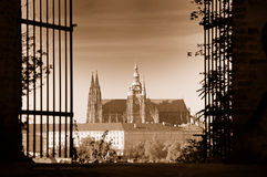 View of St.Vitus Cathedral and Prague Castle. From Petrin hill, Prague, Czech Republic. Sepia toned image stock image