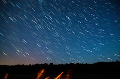 A view of the stars of the Milky Way with a trees in the foreground. Perseid Meteor Shower stock photography
