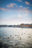 A view of Stockholm's gamla stan region Royalty Free Stock Images