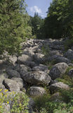 View of stone river in Vitisha mountain Royalty Free Stock Photo