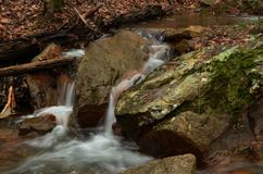 A Winter Stream in Georgia Stock Photography