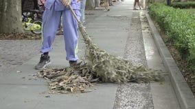 Street cleaner sweeps up leaves. View of street cleaner sweeping up leaves stock video footage