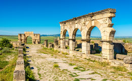 View at the street Decumanus Maximus in ruins of ancient city Volubilis - Morocco. View at the street Decumanus Maximus in ruins of ancient city Volubilis in Royalty Free Stock Photo