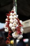 Hanging garlic and pepper Royalty Free Stock Images