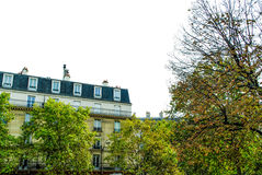 View of a street in Paris. With trees windows and nice weather Royalty Free Stock Photos