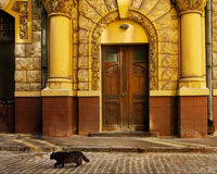 A view of streets in riga Royalty Free Stock Images