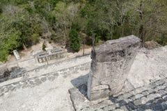Calakmul mayan ruins in Mexico stock photo