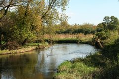 View of the Sugar River In Wisconsin. stock images